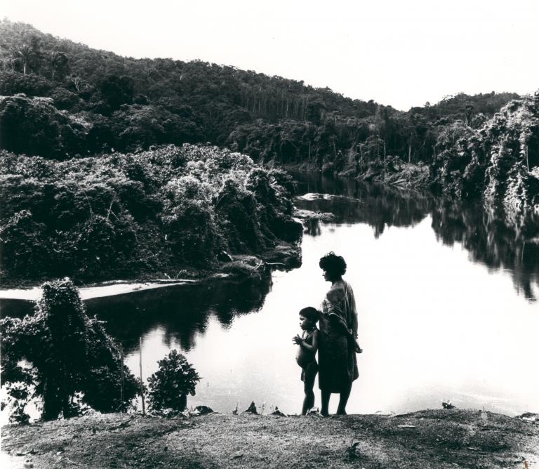 Egy asszony az őserdőbe indul… filmvetítés és beszélgetés