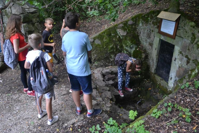 Beszámoló a környezetvédelmi nyári táborról